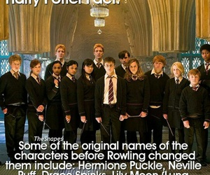 fact and harry potter image