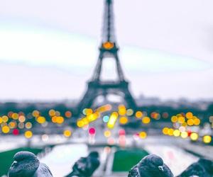 city, beautiful, and paris image