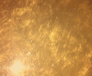 gold, lush, and bubble bar image