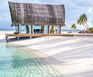 beach, Maldives, and palm trees image