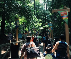 family, nature, and six flags image