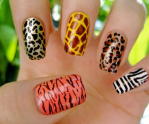 nails, animal print, and animal image