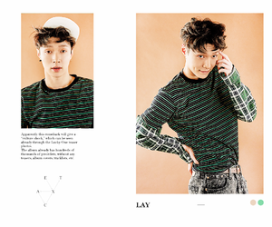 exo, kpop, and lay image