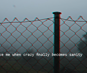 crazy, sanity, and quotes image