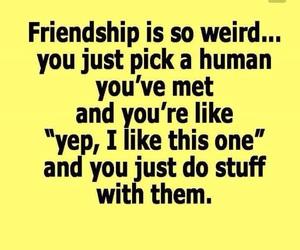 friendship, friends, and weird image