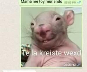lol, mama, and mom image