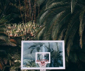 Basketball, sport, and green image