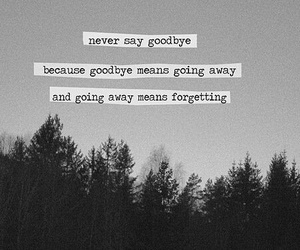 goodbye, quote, and forget image