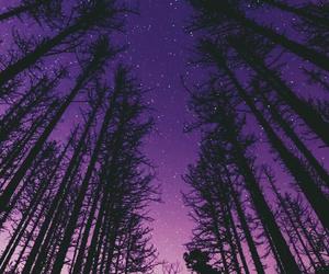 purple, nature, and sky image
