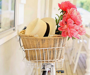 flowers, hat, and bike image