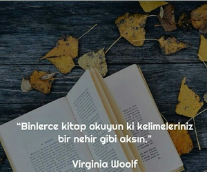 virginia woolf and türkçe sözler image