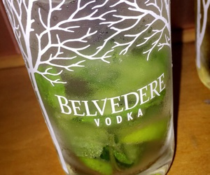 belvedere, likes, and party image