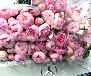 flowers, beautiful, and chic image