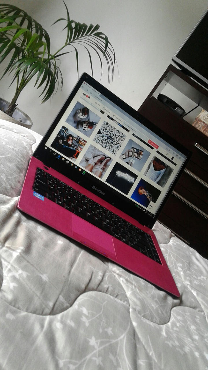 computer, pink, and rose image