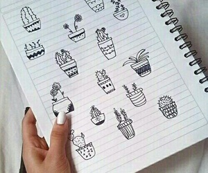 cactus and draw image