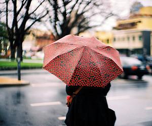 umbrella, vintage, and girl image