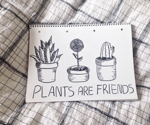 drawing, plants, and friends image