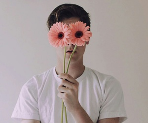 flowers, connor franta, and Connor image