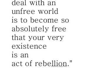 quotes, rebellion, and text image