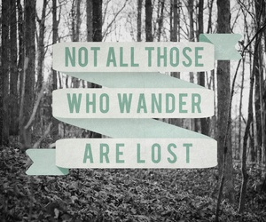 quote, lost, and wander image