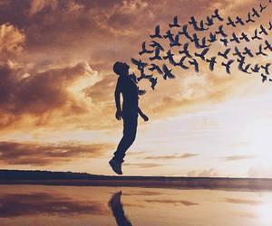 amazing, freedom, and sky image