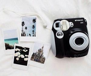 polaroid and camera image