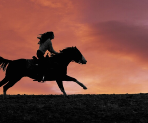 horse, gallop, and girl image