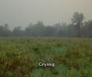 crying, sad, and grunge image