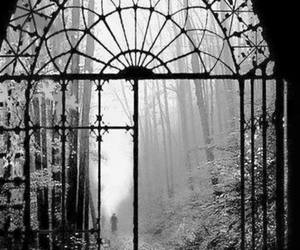 autumn, gate, and nature image