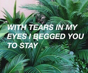 quotes, grunge, and tears image