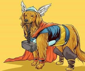 dog and thor image