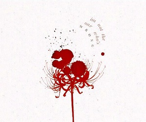 blood, cluster, and lycoris image