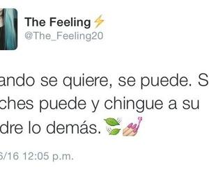 frases, twitter, and frases en español image