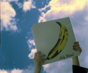 album, banana, and warhol image