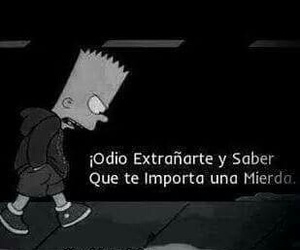 bart and frases image