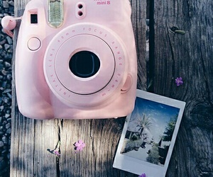 pink, polaroid, and camera image