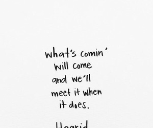 quotes, hagrid, and harry potter image