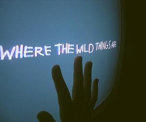 grunge, wild, and tumblr image