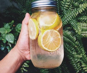 lemon, drink, and water image