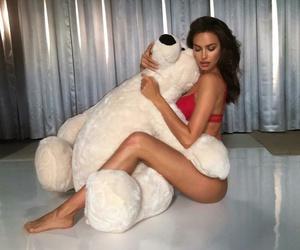 amazing, bear, and girl image