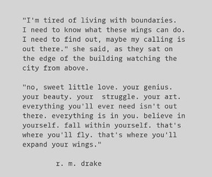 Drake, quote, and wings image