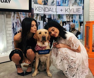 kendall jenner, kylie jenner, and dog image