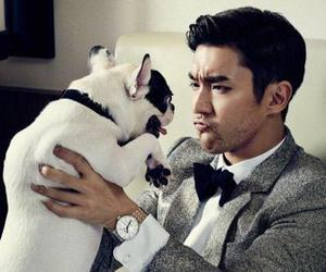 siwon, super junior, and suju image
