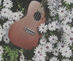 aesthetic, flowers, and music image