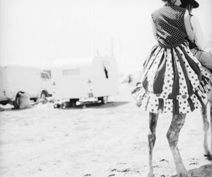 black and white, camel, and dress image