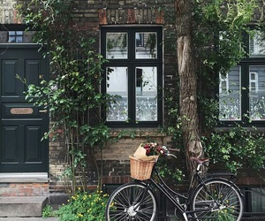 beautiful, bicycle, and bike image