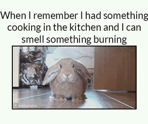 burning, me, and smell image