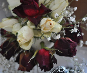 eternity, flowers, and flower image