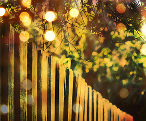 fence, light, and tree image