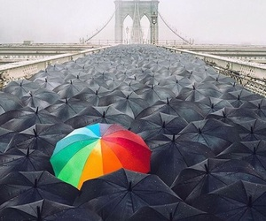 asexual, umbrella, and lgbt+ image